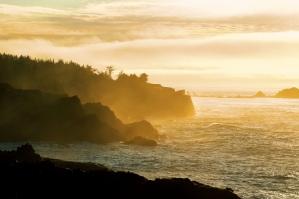 Golden Hour, Shore Acres State Park, Oregon.