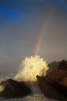 Shore Acres Tastes the Rainbow